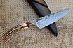 Cable Damascus and Stag Knife